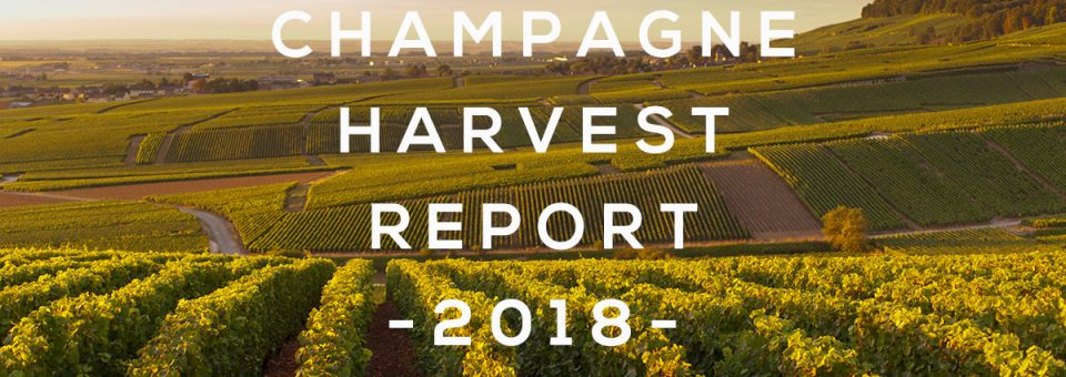 Champagne harvest 2018 report