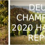 Deutz Harvest Report 2020