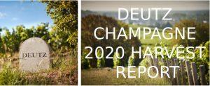 Deutz Champagne Harvest 2020 Report