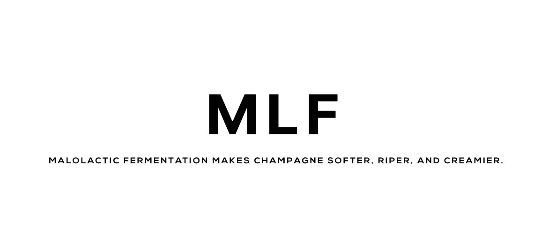MLF champagne malolactic fermentation