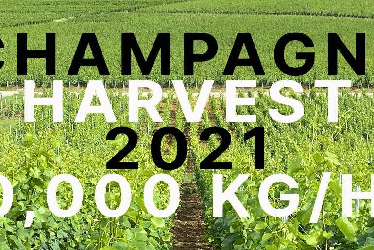 CHAMPAGNE HARVEST 2021 YIELD