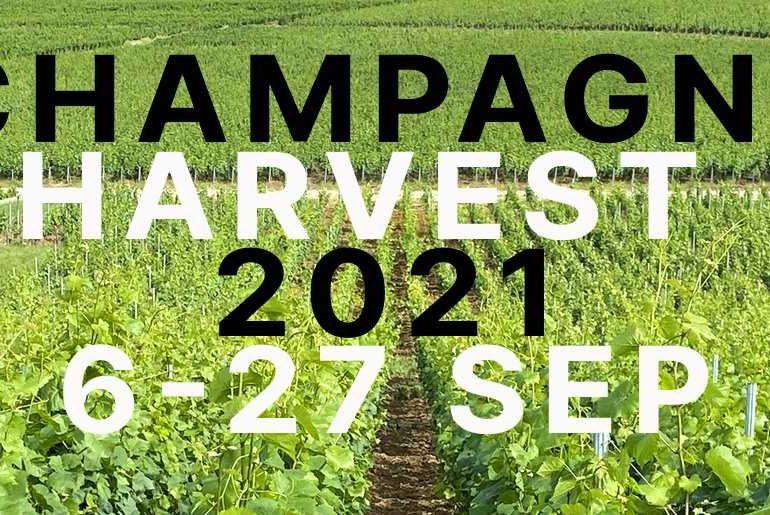 CHAMPAGNE HARVEST DATES 2021